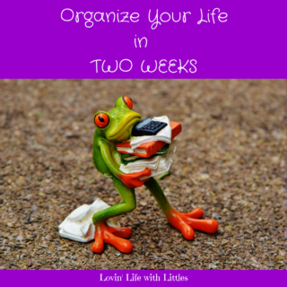 Organize Your Life in Two Weeks to Overcome Parenting Stress and Overwhelm